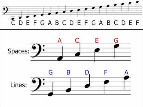 Note Names On Bass Clef
