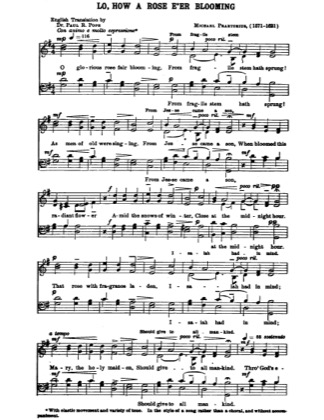 Thumbnail of first page of Lo How a Rose E'er Blooming piano sheet music PDF by Christmas.