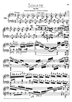 Thumbnail of first page of Sonata No.30 in E major piano sheet music PDF by Beethoven.