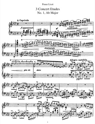 Thumbnail of first page of 3 Etudes de Concert, S.144 piano sheet music PDF by Liszt.
