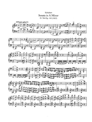 Thumbnail of first page of Piano Sonata in A minor, D.784 piano sheet music PDF by Schubert.